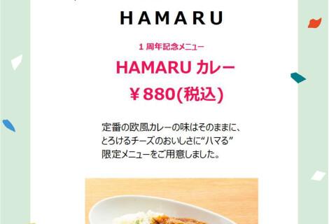 【カフェ】HAMARUカレー継続販売のご案内